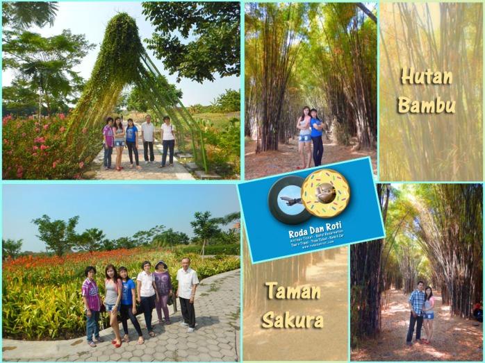 hutan bambu dan taman sakura surabaya