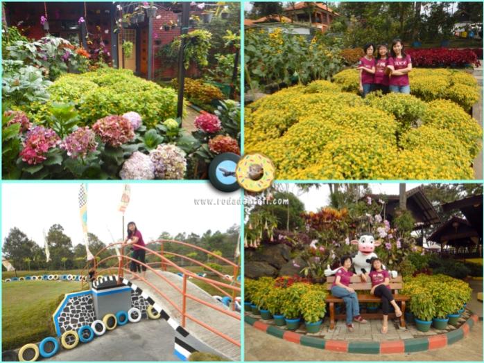Bhakti alam pasuruan kebun bunga