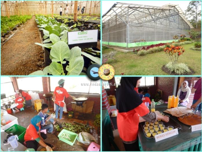 Bhakti alam pasuruan kebun sayur