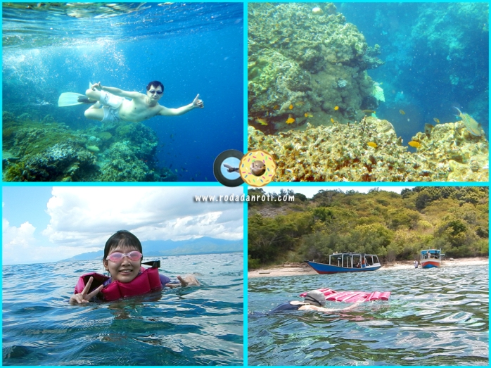 snorkling di pulau menjangan