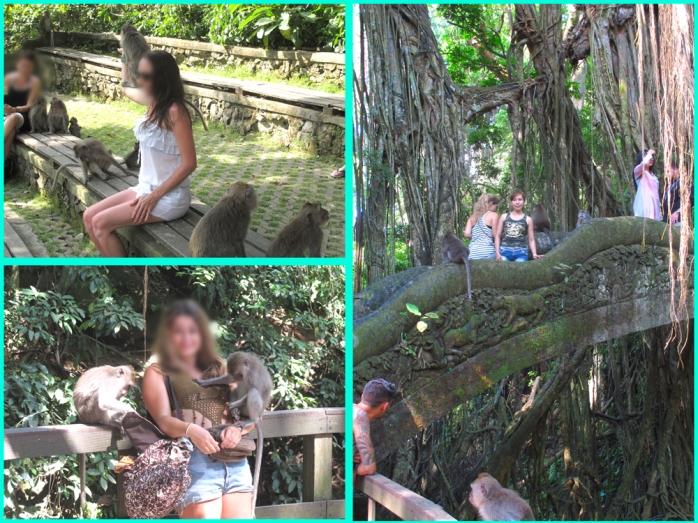 monkey-forest-ubud-045